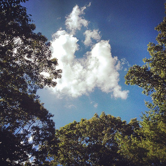 At the Glinn's. #eastend #longisland #usa #sky