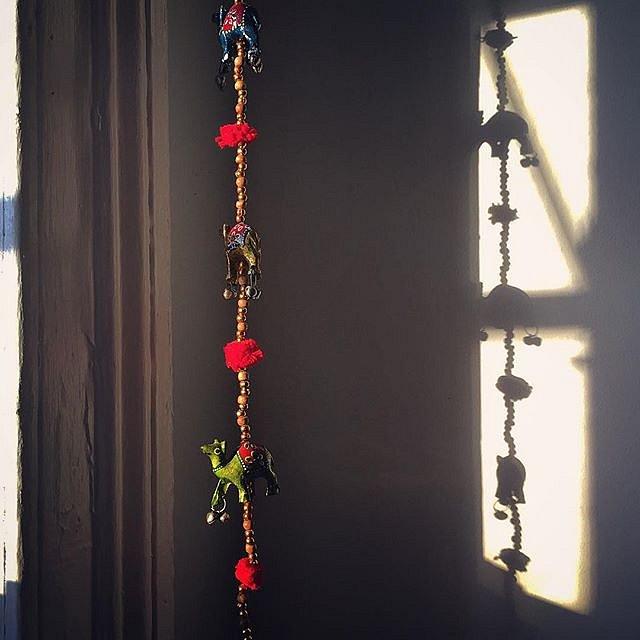 #home #brooklyn #newyork #usa #camels #light #evening #errolsroom #carrollgardens #sweetdreams