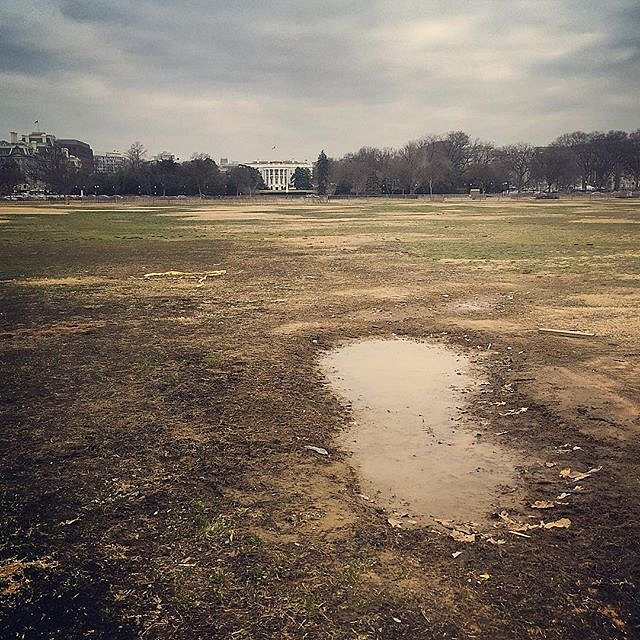 #dc #whitehouse #lawn #morning #puddle #america