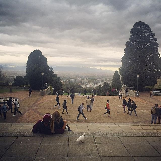 Bird watching people watching sky. #uct #couple #bird #campus #sky #watching #capetown #southafrica