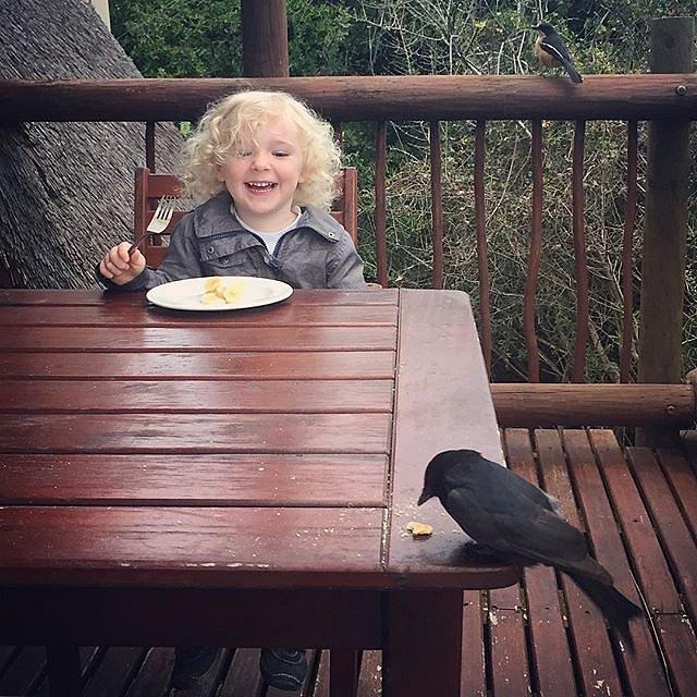 Breakfast with new friends. #bird #breakfast #errol #family #peace #southafrica #africa #addo