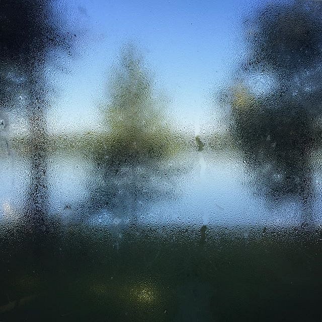 Minnesota morning through the cabin window. #family #peace #minnesota #morning
