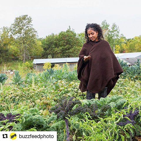 """""""In the US, Native communities are too often overlooked or thought of as relics, or even not existing. They're still here, in all of their complexity and copiousness."""" On the Red Lake Indian Reservation in northwestern Minnesota, the Ojibwe people are working to reclaim their food sovereignty with recipes that celebrate their heritage and make use of the bountiful land that they call home. Photographer Sarah Stacke attended this year's second annual Red Lake Nation Food Summit to capture these centuries-old recipes in the making. Follow the link in our bio for the full story. (:@sarah_stacke)"""