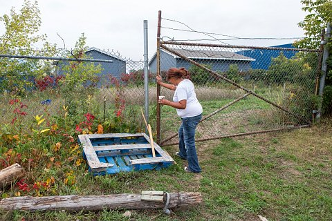 Tara Ryan closes the gate to the medicine garden on the Red Lake Indian Reservation in northern Minnesota. <br>September 14, 2017.